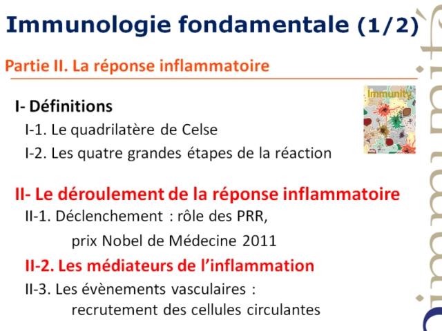 Les acteurs moléculaires et cellulaires de l'inflamation