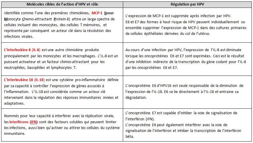 Quelques stratégies d'échappement des virus HPV au système immunitaire.