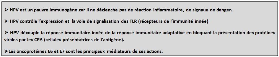 HPV et réponse immunitaire : les points clés.