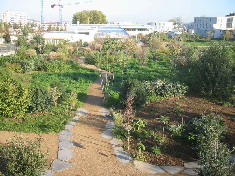 Le jardin de l'iFé cadre de Formaterre