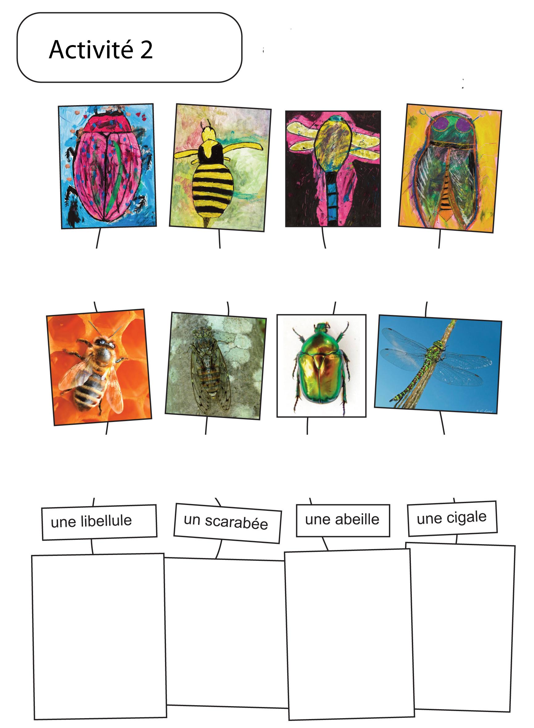Insectes... Peintures expressives : Exemple 2 d'activité