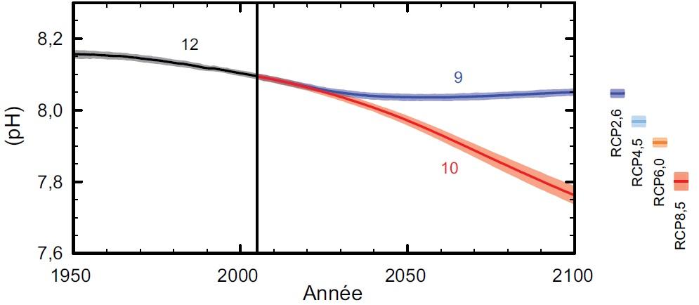 Evolution du pH des océans selon les scénarios RCP (GIEC, 2013)