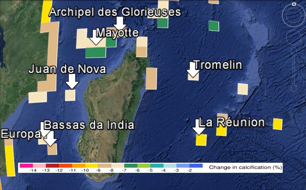 Décalcification des récifs dans la zone de Madagascar avec un forçage RCP8.5