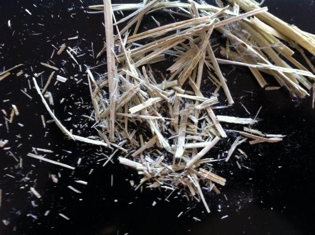 débris après battage des tiges séchées