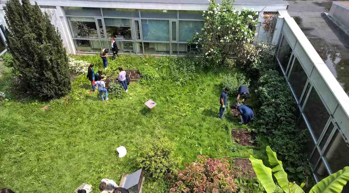 Tous au jardin : vue du 1er étage