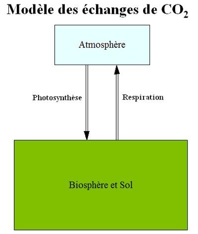 Modèle papier des échanges de CO2 entre l'atmosphère et la biosphère